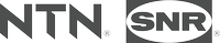 NTN-SNR-Logo_light